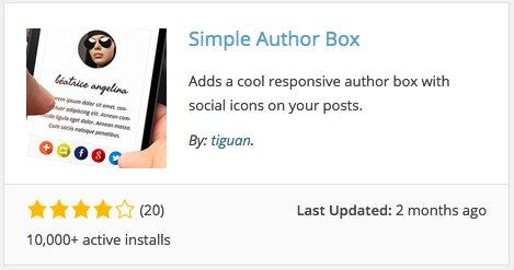 The Simple Author Box plugin for WordPress