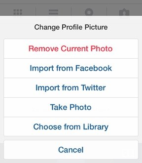 Import your profile pic for Instagram from Twitter or Facebook